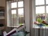 Дизайн штор для детской, фото 20